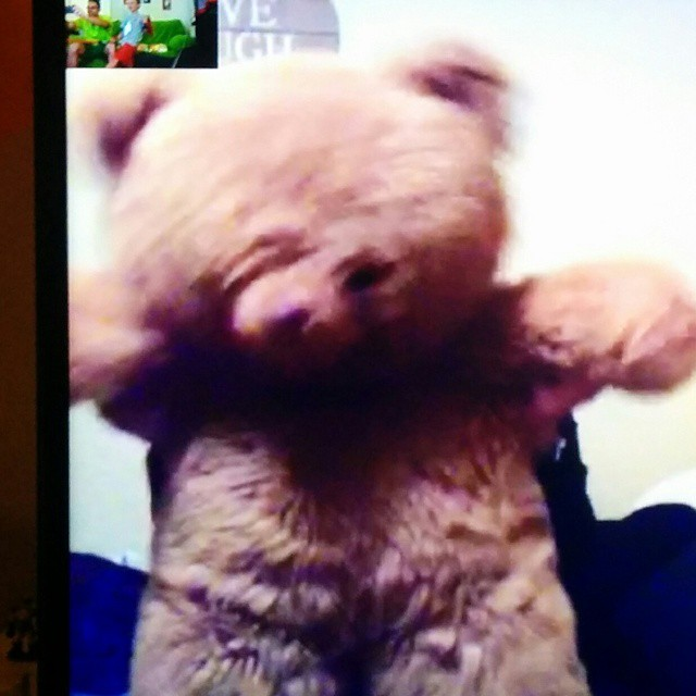 La tía @meeridelap cantando el cumpleaños feliz imitando a un oso por Videoconferencia