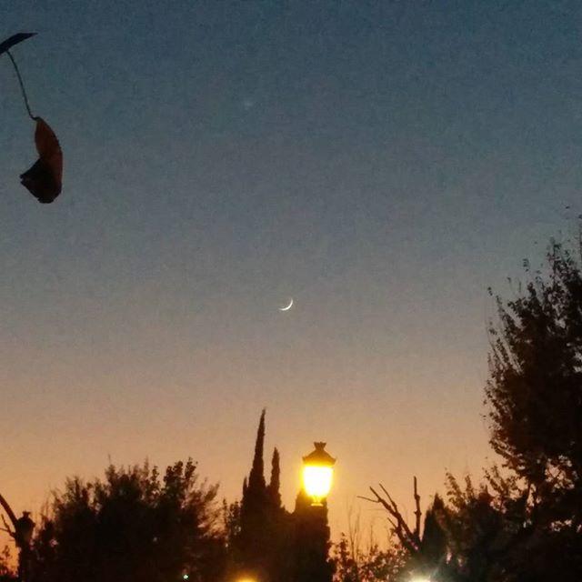 Ayer me dijeron que había una pestaña luminosa en el cielo #sinfiltros