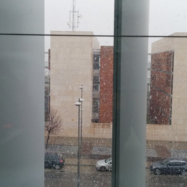 Certificado de que en la ciudad de #Granada también ha nevado. Y se acabó :( #snow