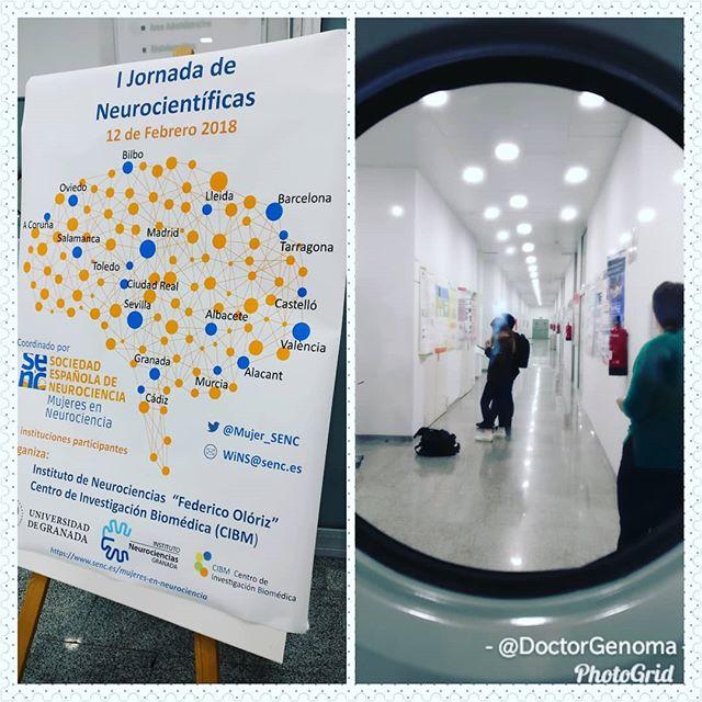 I jornada de Neurocientíficas ¡pasaos por el CIBM de #Granada! #mujeryciencia #mujeresenciencia